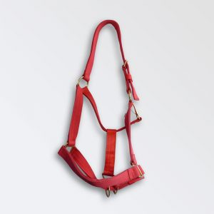 Large heavy horse head collar in red