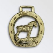 Clydesdale Stallion in Horse Shoe