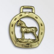 Shire Stallion in Horse Shoe