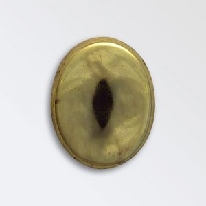Brass Harness Decoration - Oval