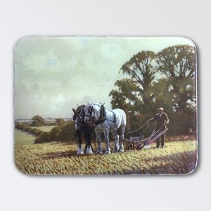 Country Life Work Top Protector